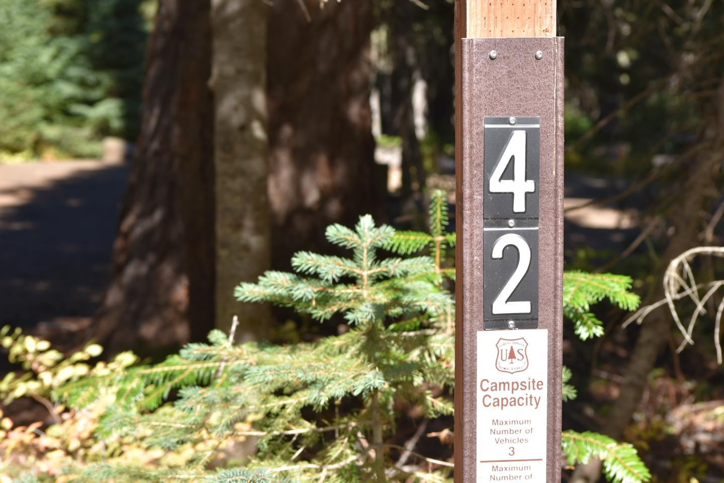camp site entrance signJubilee Lake Campground site#42