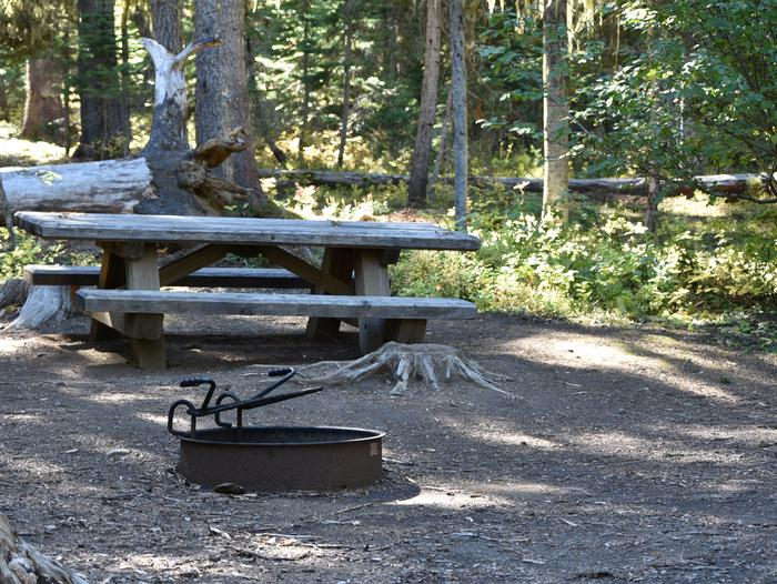 camp site picnic table and fire ringJubilee Lake Campground site #44