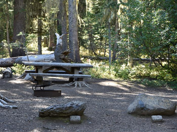 camp site with fire ring and picnic tableJubilee Lake Campground site #45