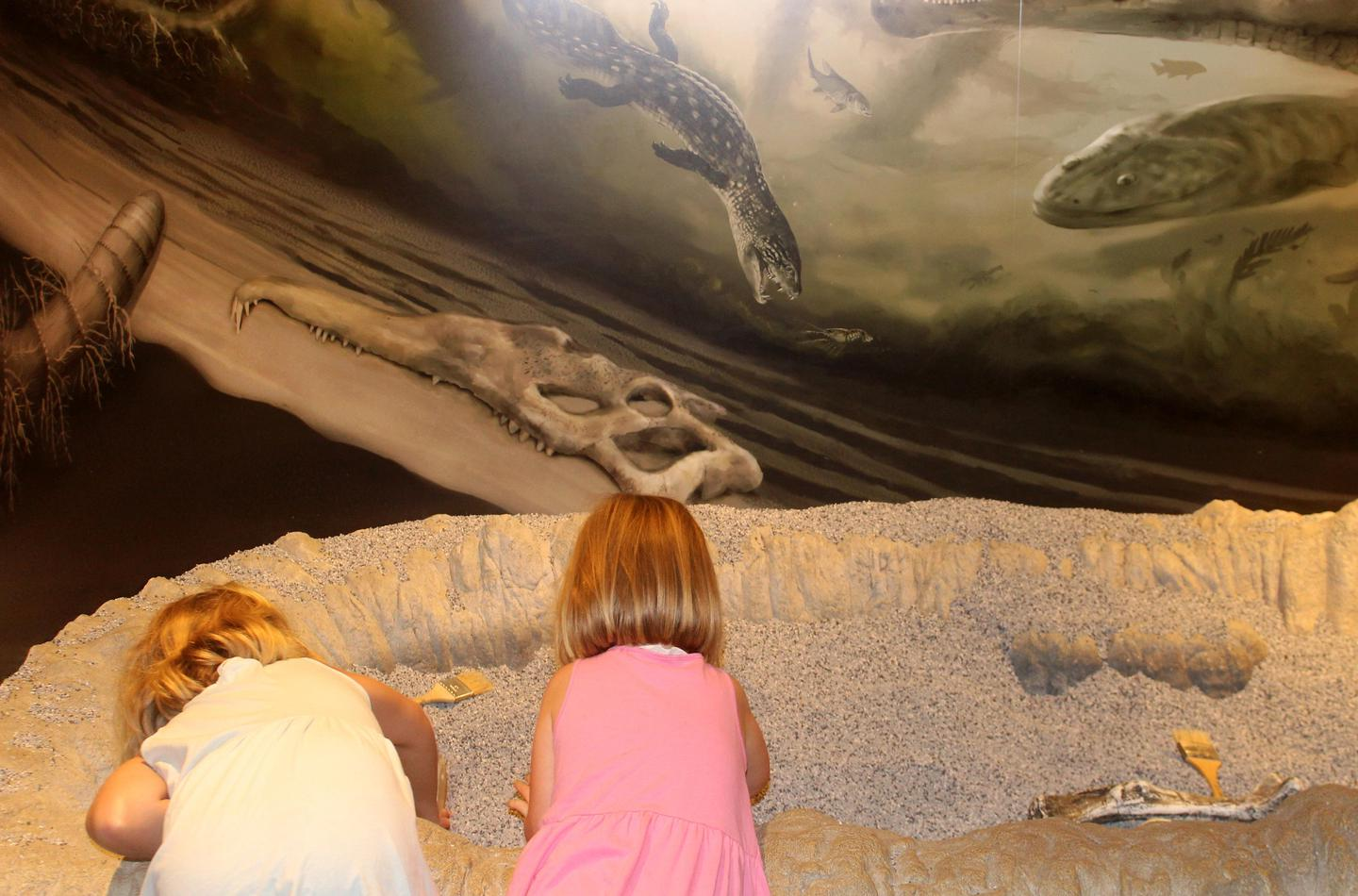 Children trying out the dig exhibit at Rainbow Forest Museum
