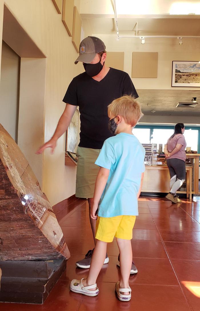 Masked visitors looking at exhibits at Rainbow Forest Museum 2Masked visitors looking at exhibits at Rainbow Forest Museum