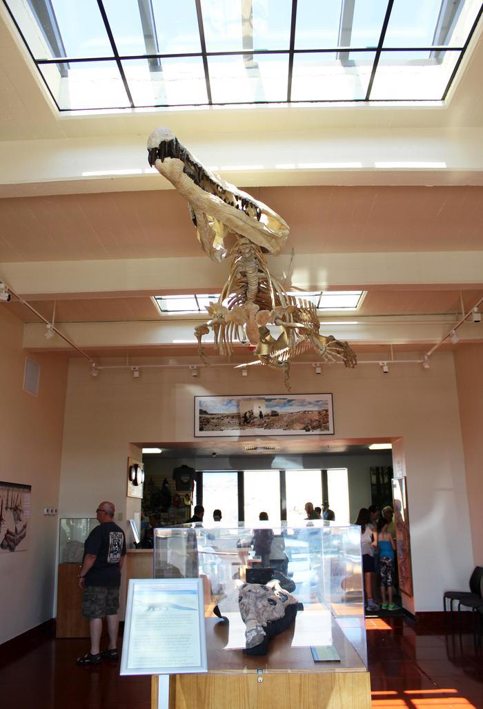 Lobby at Rainbow Forest MuseumPhytosaur oversees the lobby at Rainbow Forest Museum