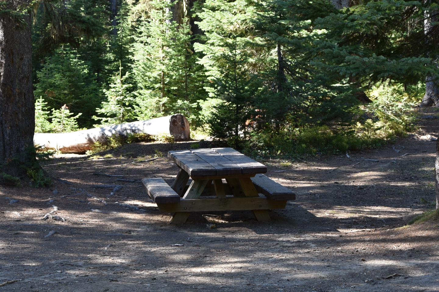 camp site picnic tableJubilee Lake Campground site #53