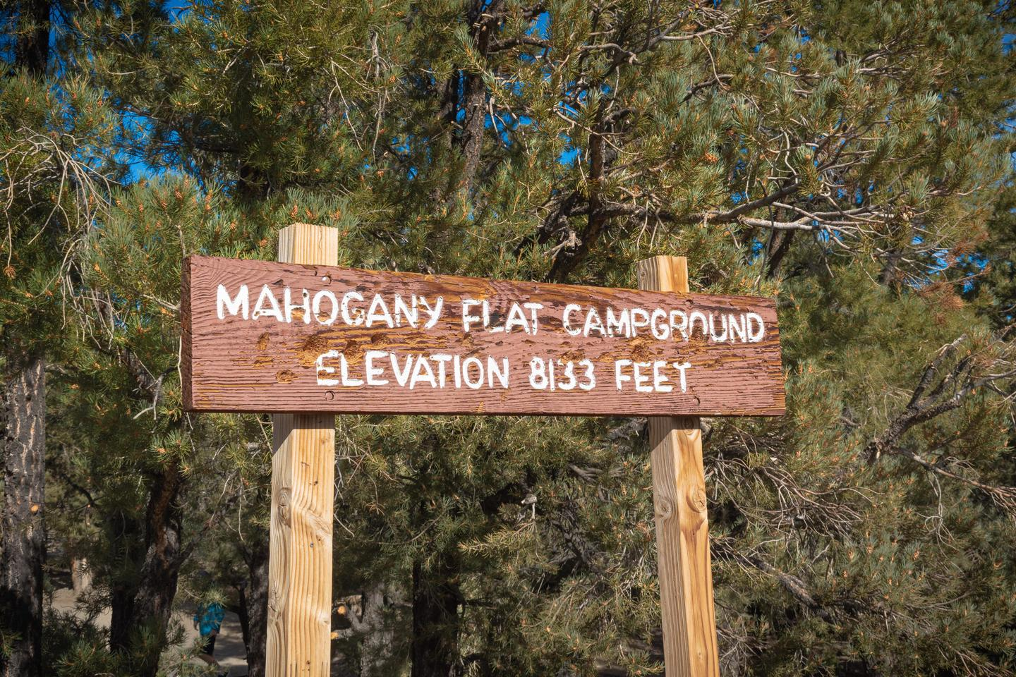 Mahogany Flat Campground SignThis higher elevation campsite is closed in the winter.