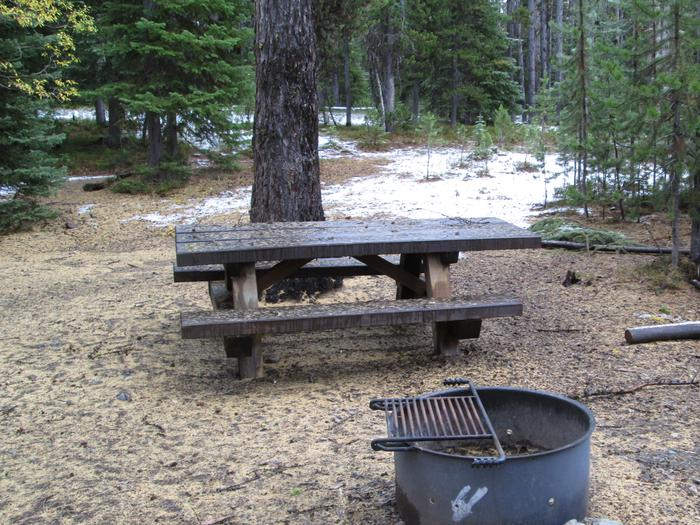 campsite picnic table and fire ringOlive Lake Campground site #2