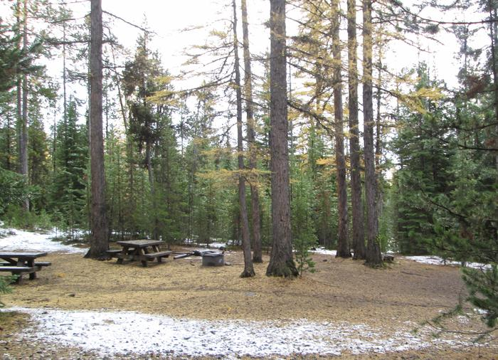 camp siteOlive Lake Campground site #2