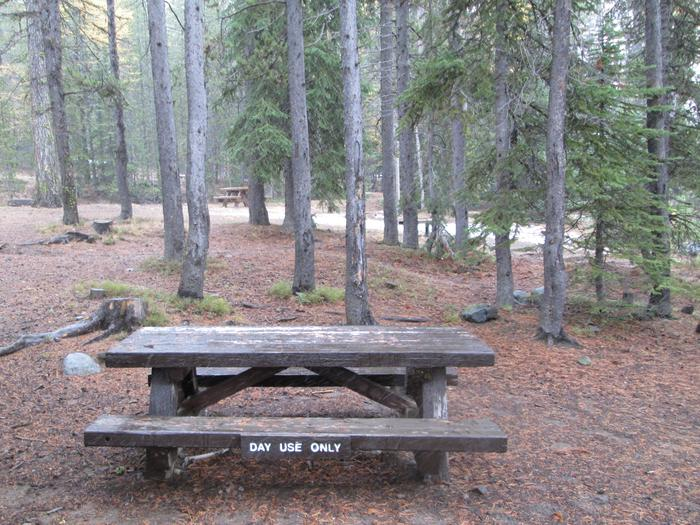 camp site picnic tableOlive Lake Campground site #5