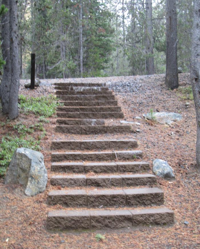 campsite stairs and parking areaOlive Lake Campground site #7
