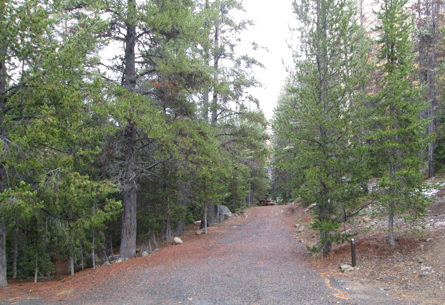 campsite parking area and entrance signOlive Lake Campground site #10