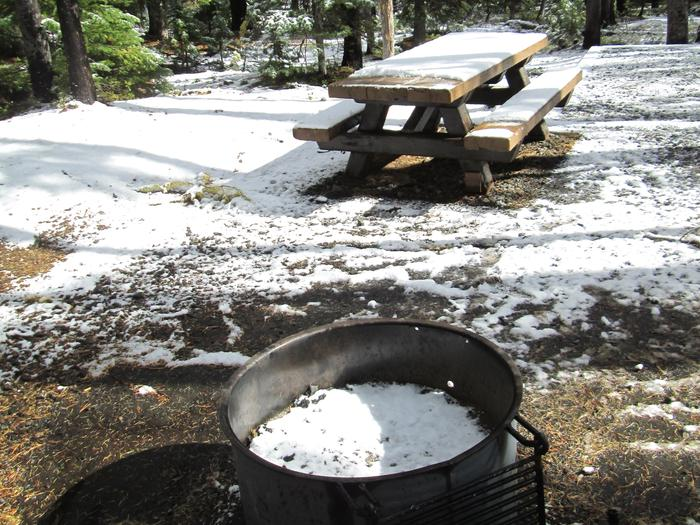 campsite picnic table and fire ringOlive Lake Campground site #16