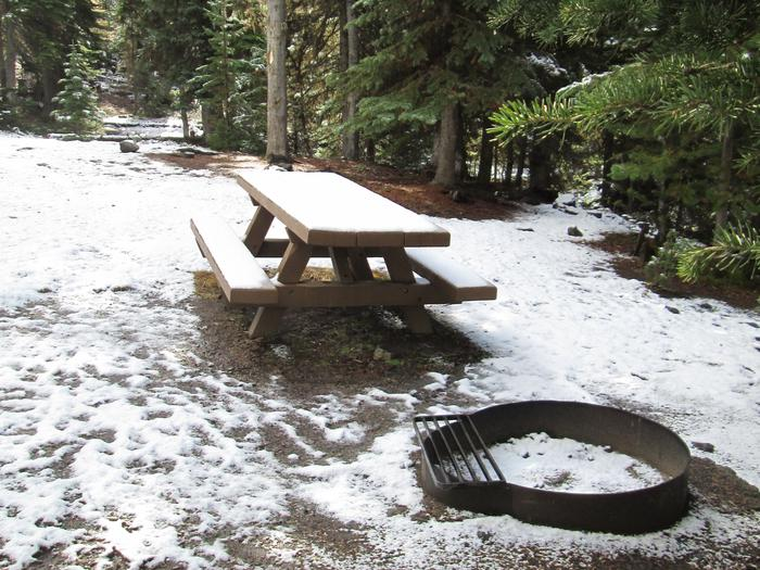 campsite picnic table and fire ringOlive Lake Campground site #17