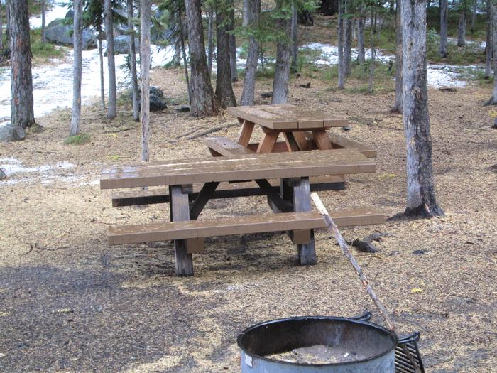 campsite fire ring and picnic tableOlive Lake site #27
