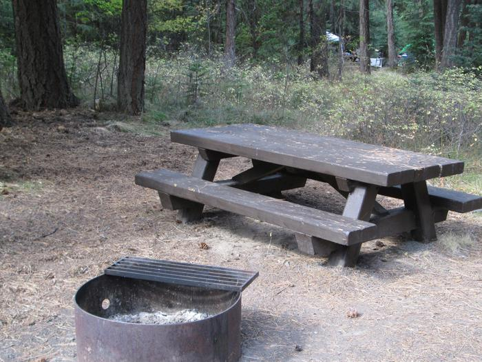 campsite picnic table and fire ringBull Prairie Lake site #3
