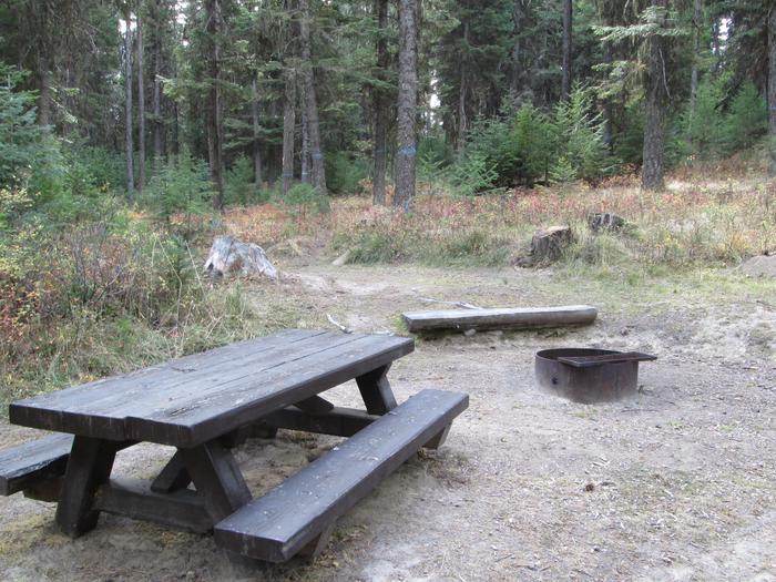 campsite picnic table and fire ringBull Prairie Lake site #4