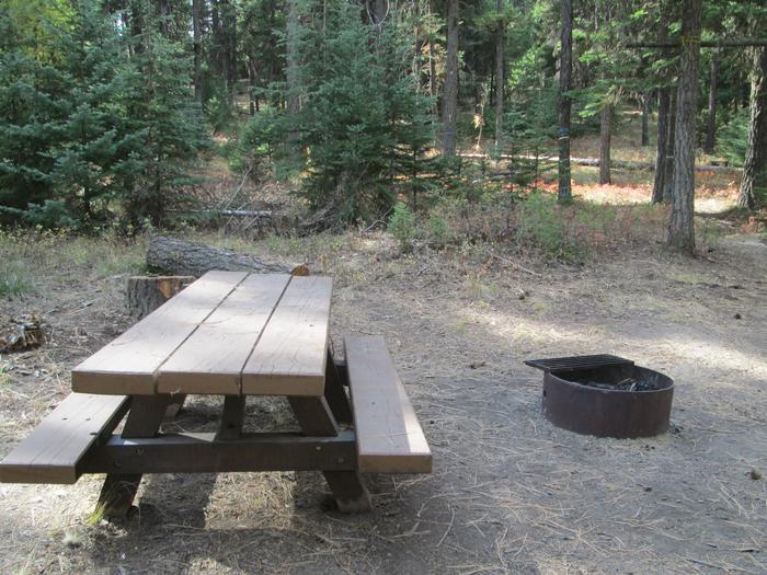 campsite picnic table and fire ringBull Prairie Lake site #5