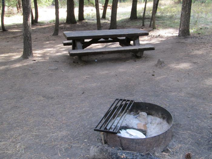 campsite picnic table and fire ringBull Prairie Lake site #8