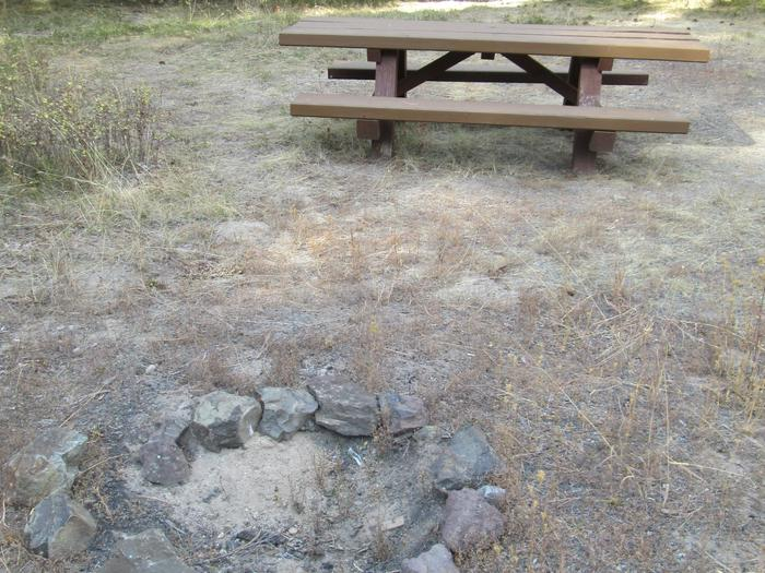campsite fire ring and picnic tableBull Prairie Lake site #9
