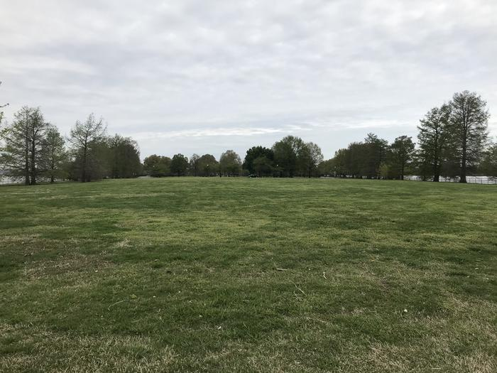 A view of the Hains Point Mixed Use Field looking back toward Hains point. A grassy field bordered by trees.Hains Point Mixed Use Field