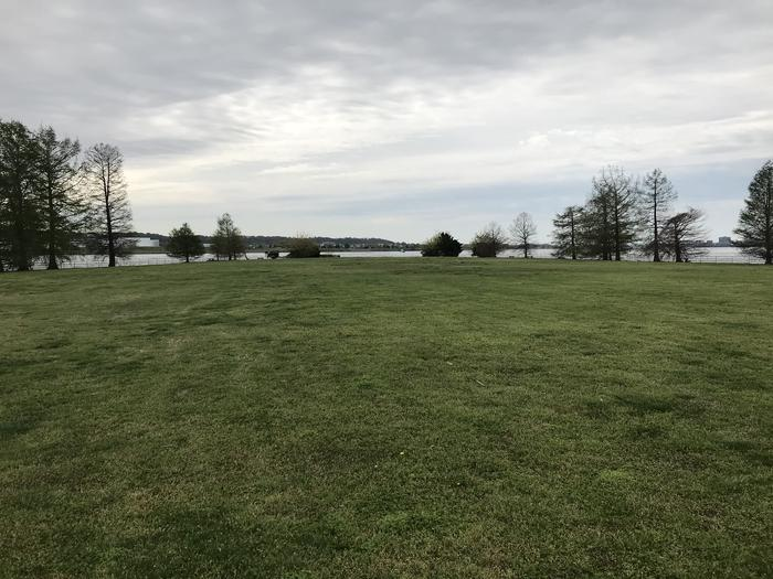 A view of the Hains Point Mixed Use Field looking out toward the Potomac River and Washington Channel. A grassy field bordered by trees.Hains Point Mixed Use Field
