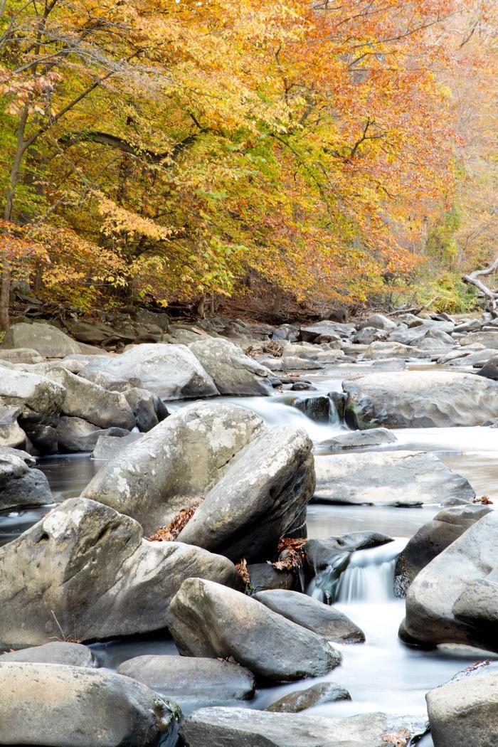 Rocks in the CreekRock Creek in Autumn