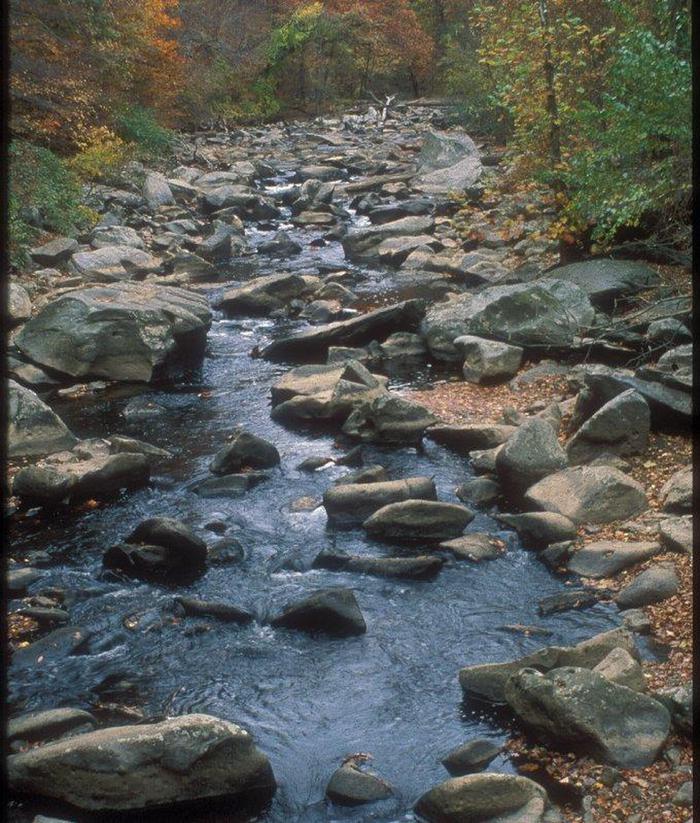Rocks in Rock CreekRock Creek