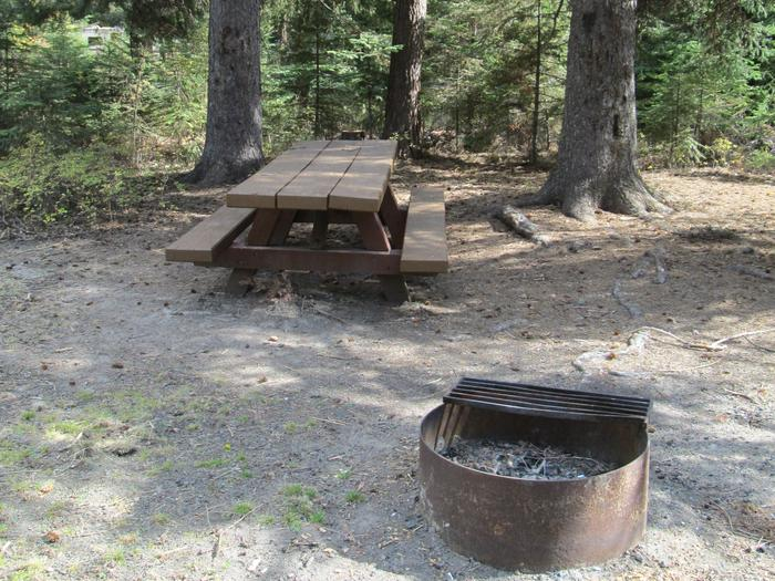 campsite fire ring and picnic tableBull Prairie Lake Campground site #15