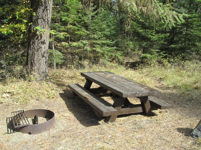 campsite picnic table and fire ringBull Prairie Lake Campground site #16