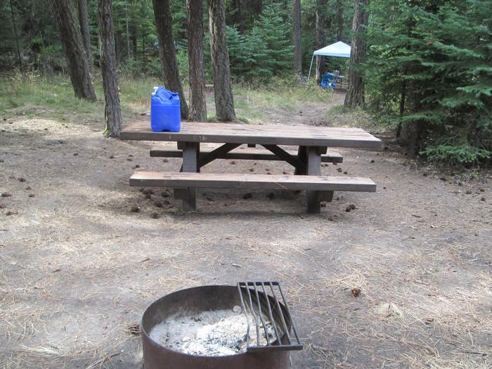 campsite picnic table and fire ringBull Prairie Lake Campground site #19