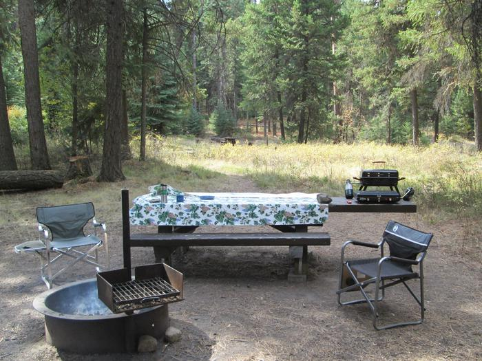 campsite picnic table and fire ringBull Prairie Lake Campground site #23