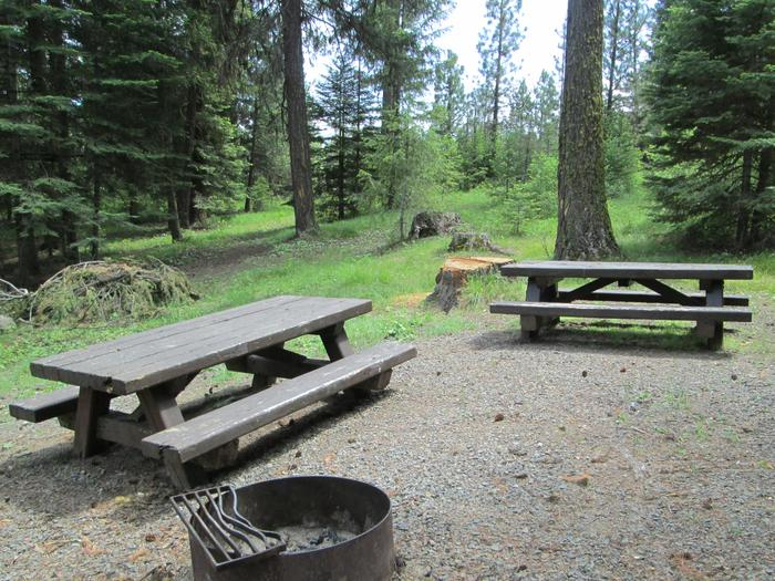 campsite picnic table and fire ringBull Prairie Lake Campground site #25