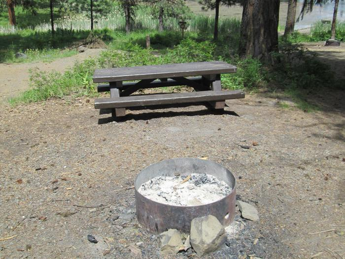 campsite picnic table and fire ringBull Prairie Lake Campground site #26