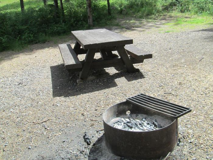 campsite picnic table and fire ringBull Prairie Lake Campground site #27