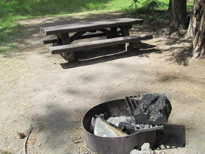 campsite picnic table and fire ringBull Prairie Lake Campground site #30