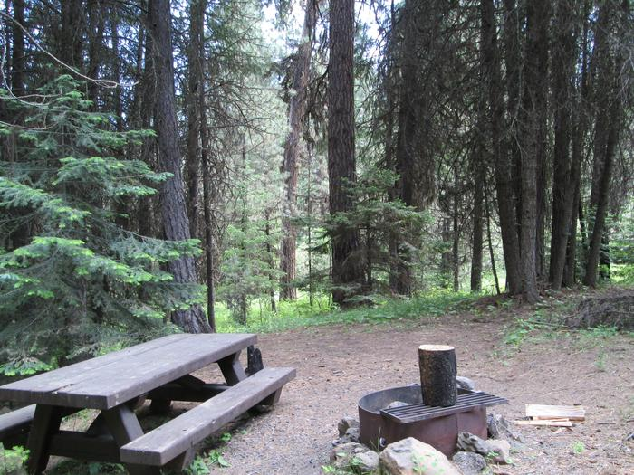 campsite picnic table and fire ringBull Prairie Lake Campground site #29
