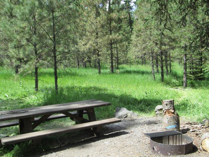campsite picnic table and fire ringBull Prairie Lake Campground site #28