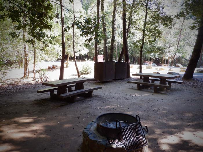 School House 26 DoubleBear Boxes, Picnic Tables and Fire Ring