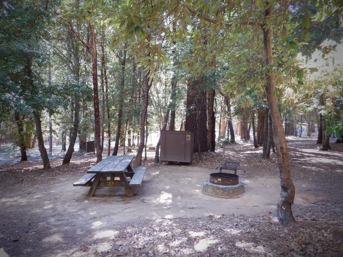 School House Site 27Picnic Table, Bear Box and Fire Ring