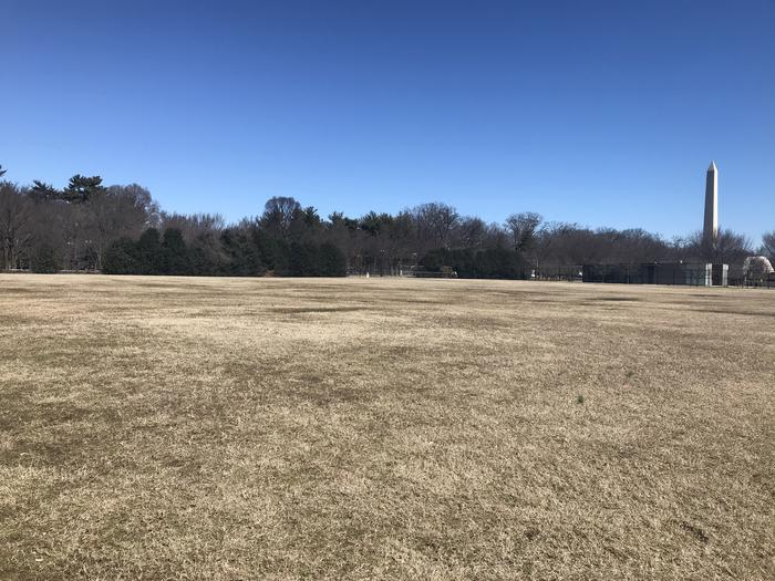 The image shows an open grassy area with trees and the Washington Monument in the background.Field M2