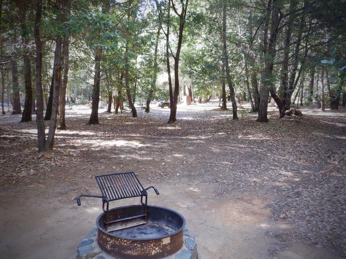 Site 27Fire Ring and Tent Pad