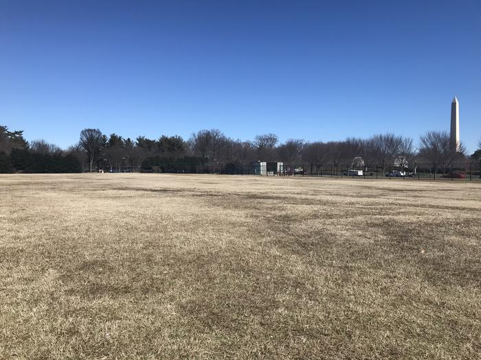 The image shows an open grassy area with trees and the Washington Monument in the background.Field M3