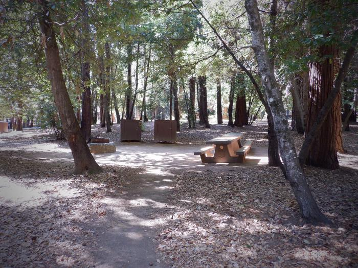 Site 28 DBear Boxes, Picnic Tables and Fire Ring
