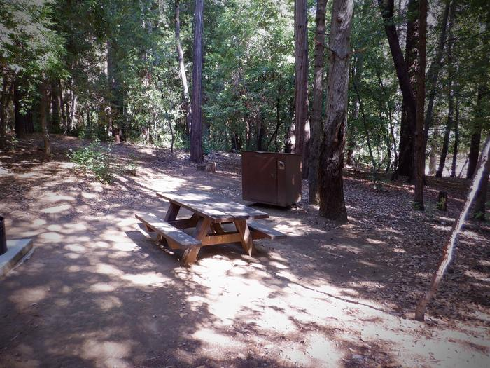 Site 29Tent pad, picnic table and bear box