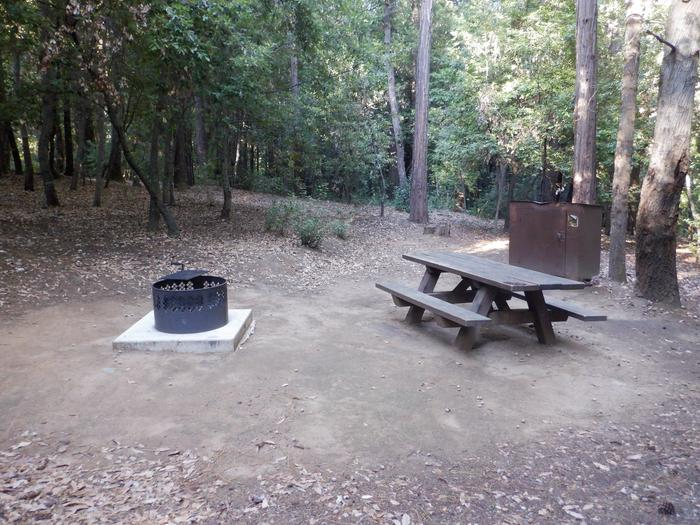 29Fire ring, picnic table and bear box