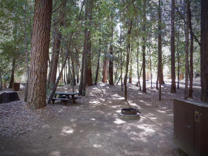School House 30Picnic table, fire ring and bear box