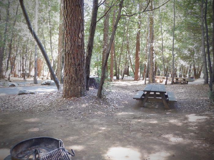 SH Site 30Fire ring and table