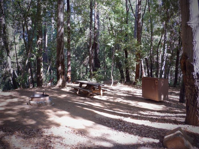 School House Campsite 31Fire ring, picnic table and bear box