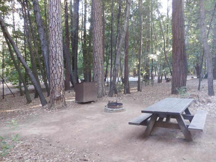 Site 32Tent pad, bear box, fire ring and table