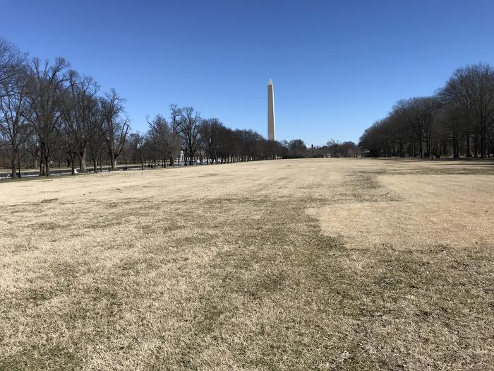 The photo shows an open grassy field flanked by trees. The Washington Monument can be seen in the background.Field M7