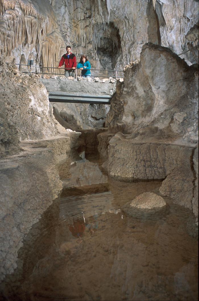 Longfellow's Bathtub