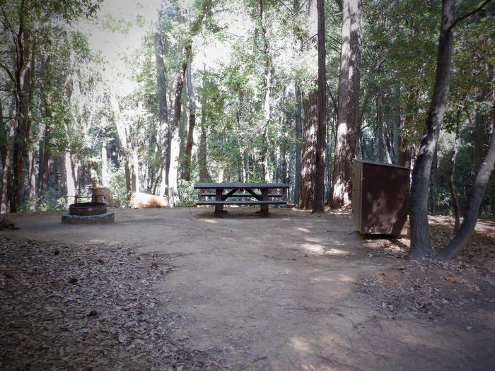 School House Site 33Fire ring, picnic table and bear box